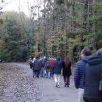 Retour par la forêt domaniale