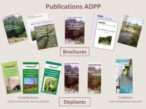 PUBLICATIONS 2020